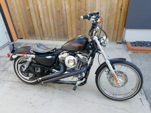 Harley Sportster 2012 XL 1200V