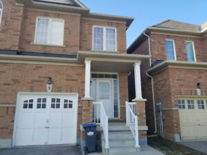 NEWLY RENOVATED BASEMENT Best Location in Brampton
