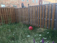 All TYPE OF FENCE----Brampton-Mississauga-Etobicoke