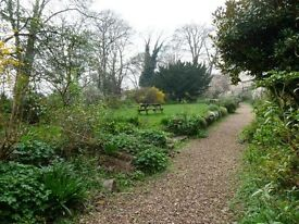 CLIFTON, Bristol, 2 double bedroom flat, lovely communal gardens, very desirable quiet location