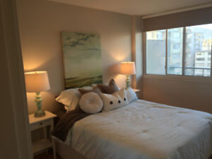 Large 1bd suite in Vancouver's West End  [ West of Denman ]
