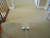 Professional Carpet & Furniture Steam Cleaning Specials!