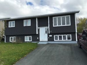 Newly Painted. Bright, Spacious 1 Bedroom Basement Apartment