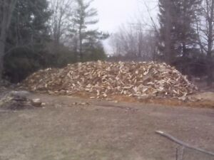 Bush Cord of Fire Wood Delivered