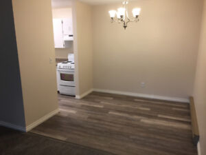 Renovated Two Bedroom Downtown Apartment