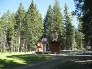 Country Cute----View To Boot (Timothy Lake, Lac LaHache)