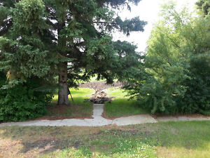 beautiful double lot in Mannvile