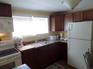 Pristine Clean and available for short term St. John's Newfoundland image 1
