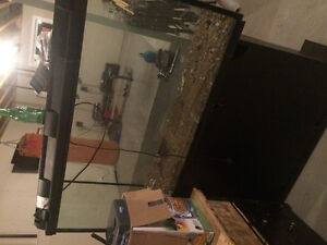 50 gallon fish tank with stand and pump
