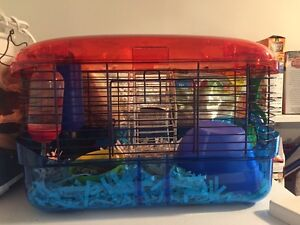 Hamster/ mouse/ gerbil cage and accessories