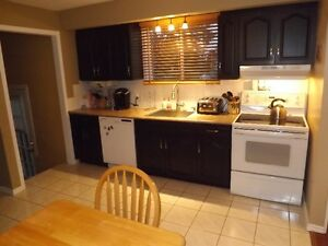 3+1 bedroom elevated bungalow - 98 Nicholson Cres, Amherstview Kingston Kingston Area image 4