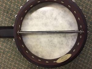 Washburn 6 String Banjo--open back Edmonton Edmonton Area image 2