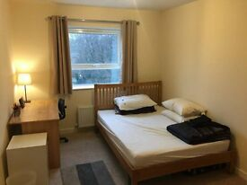 Double Bedroom Available for Flatshare - 1st March Availability, No fees, Private live-in Landlord