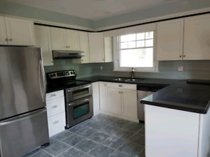Beautiful kitchen and appliances!