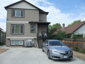 3 BR Duplex to Share