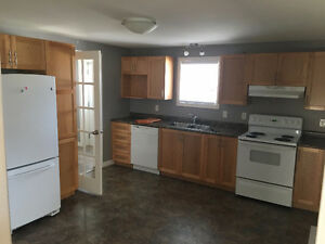 new appartment for rent in the Goulds