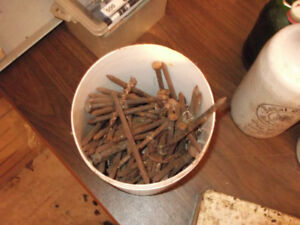 bucket of 5 inch spikes