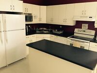 1 furnished room on William by red river dwnt AUG 1