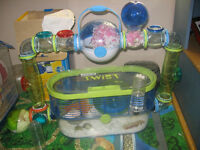 Hamster with cage for $40 or just hamster for free