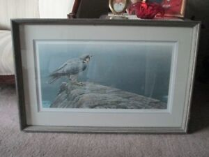 Robert Bateman - Ready For Flight - Peregrine Falcon Limited