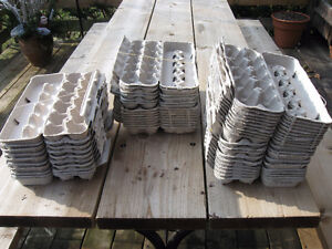 VARIOUS EGG CARTONS FOR SALE