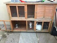 Extra Large Rabbit Cage