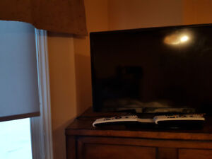 Proscan TV 26'' with mount
