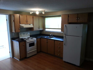 2 Bedroom St. John's Apartment Close to Colleges and University