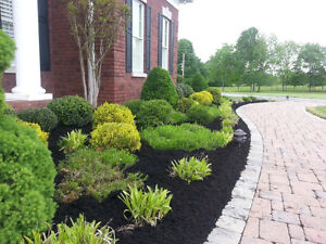 Student Pro Landscaping - Quality Work •  Sodding • Clean-up