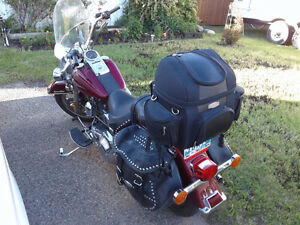 Harley Davidson - needs a younger owner