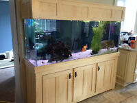 150 gallon aquarium and cabinet