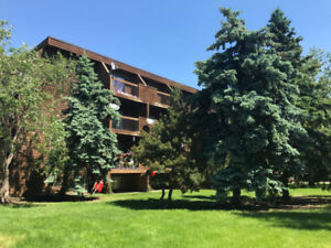 Here's a fantastic condo located in the Vibrant City of Camrose!