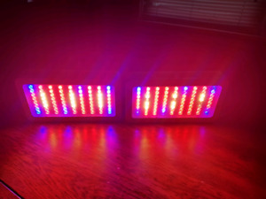2-300 watt Led grow light