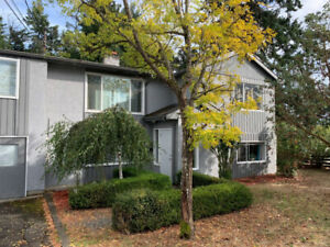 3-bedroom, 2-bath Langford home for rent