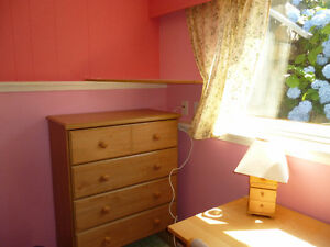 Charming and bright furnished room