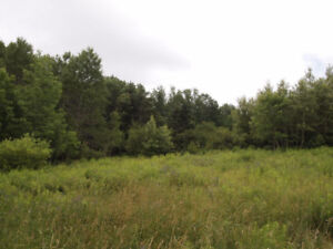 LOOKING TO PURCHASE VACANT LAND