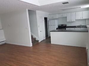 Renovated Apartment in Tisdale