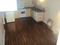 Pickering, spacious, 3 bed Bsmt apt for rent (Liverpool & Bayly