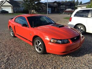 For Sale or Trade, 2004 Ford Mustang Mach 1