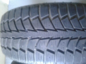 two winters/two allseasons 205/55r16