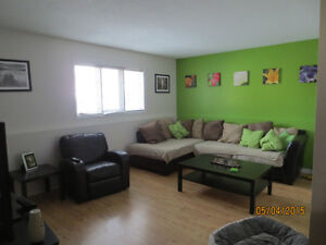 Triplex on Plateau Hull For Sale By Owner - Price reduced Gatineau Ottawa / Gatineau Area image 3