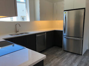 Brand new apartment in downtown Almonte avail. for August 1st
