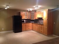 Basement suite for rent in Chestermere