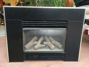 Faber Gas Fireplace Insert - Great Condition