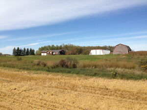 Acreage with creek on full quarter by Neudorf