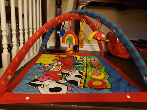 Perfect condition Baby Cleaned out my closet  Tummy time mat $15