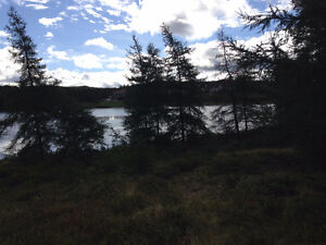 Commercial Land for Sale in Bay Roberts on Beaver Pond!!! St. John's Newfoundland image 2