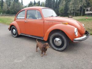 1971 VW Beetle - Super Bug