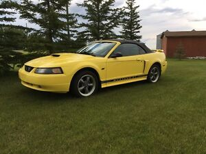 2002 Mustang GT Convertable