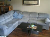 Sectional Couch with pullout bed